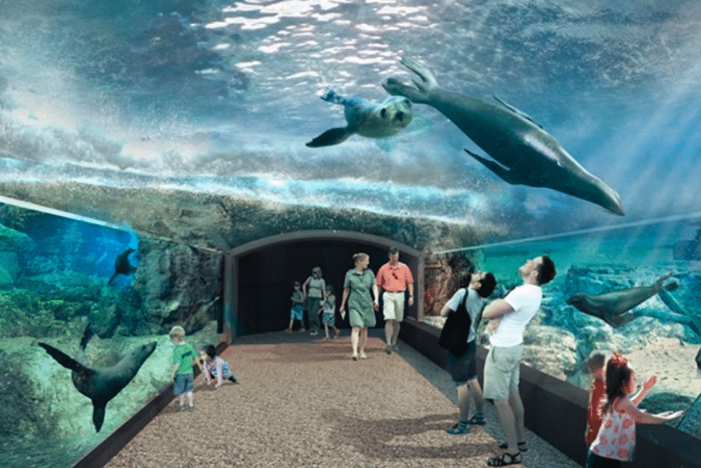 Houston Zoo Unveils Cutting-Edge Plans For 2022 'Galapagos Islands' Exhibit