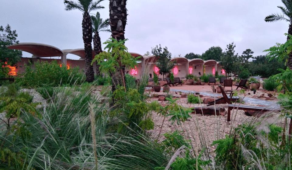 Houston Botanic Garden Opens Art In The Garden Exhibit