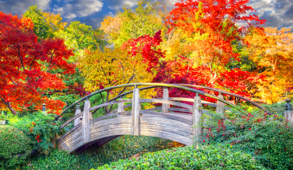 10 Breathtaking Places To See Fall Foliage In Texas