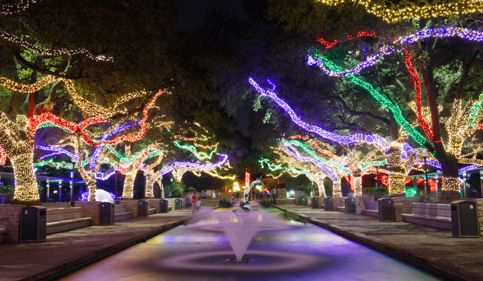 Zoo Lights To Make Spectacular Return This Festive Season